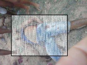35990984 1787217534706494 6859599191652433920 n - Executado na zona rural de Barra do Corda, homem considerado de altíssima periculosidade - minuto barra