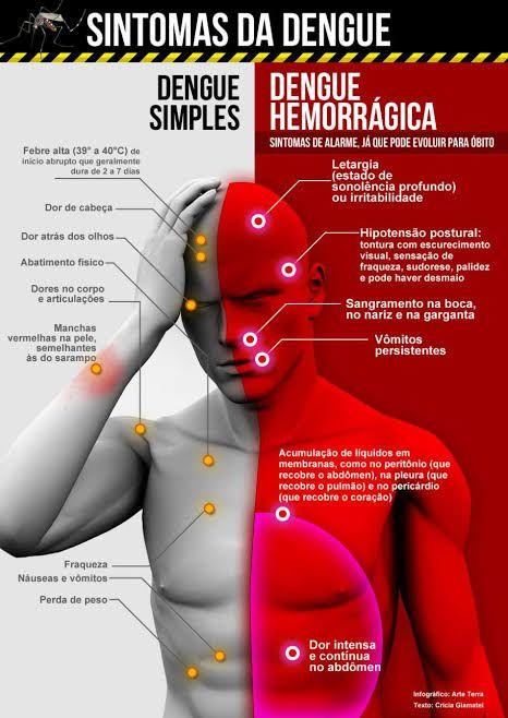 images 4 3 - URGENTE!! Criança de Barra do Corda se encontra na UTI em Teresina com dengue hemorrágica - minuto barra