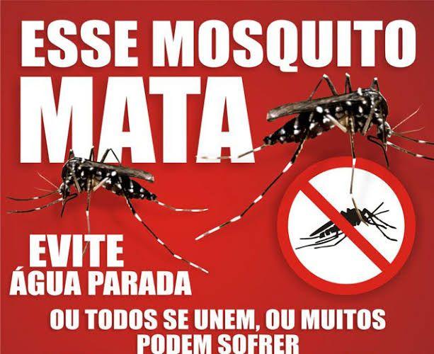 images 5 2 - Vereador em Barra do Corda encontra-se com dengue - minuto barra