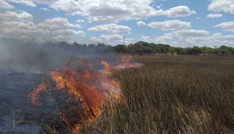 barra do corda ocupa o primeiro lugar em focos de queimadas no maranhao - Barra do Corda ocupa o primeiro lugar em focos de queimadas no Maranhão - minuto barra