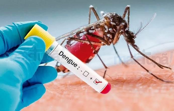 epidemia parana registra 76 mil casos de dengue com 57 mortes nos ultimos sete meses - Casos de dengue avançam 72% em um ano, e ministério cria comitê para monitorar crescimento - minuto barra
