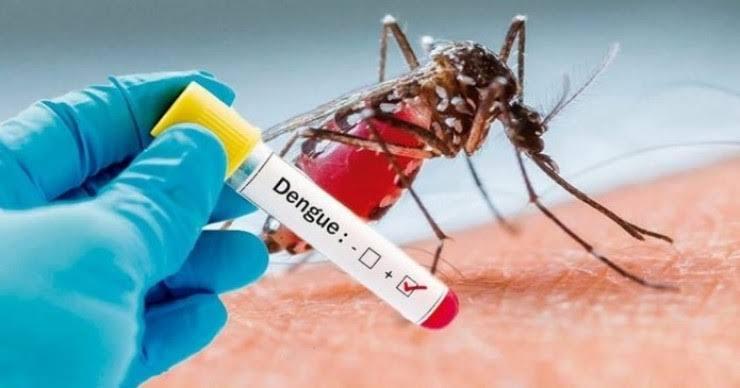 situacao grave barra do corda registra em apenas um mes 205 casos de dengue - SITUAÇÃO GRAVE!! Barra do Corda registra em apenas um mês 205 casos de dengue, cidade lidera no Maranhão - minuto barra