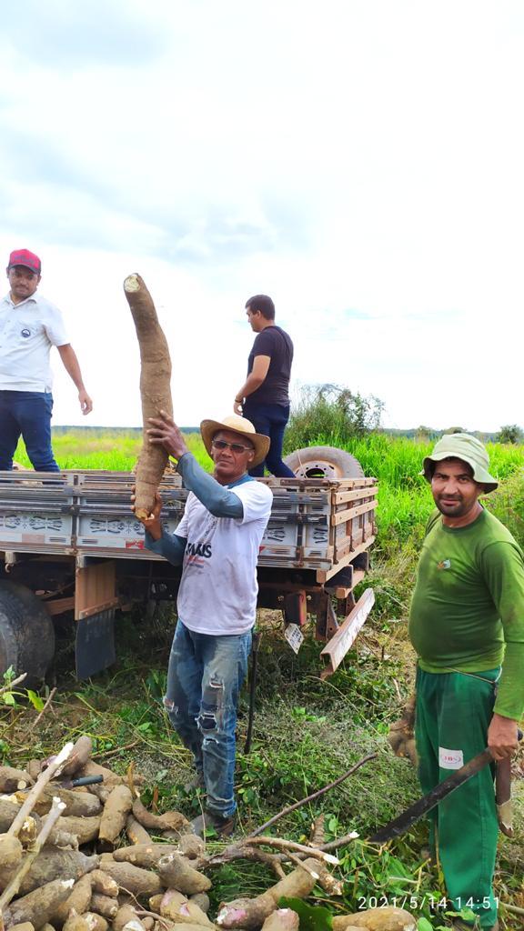 gestao do prefeito arnobio investe na agricultura familiar em jenipapo dos vieiras 3 - Gestão do prefeito Arnóbio investe na agricultura familiar em Jenipapo dos Vieiras