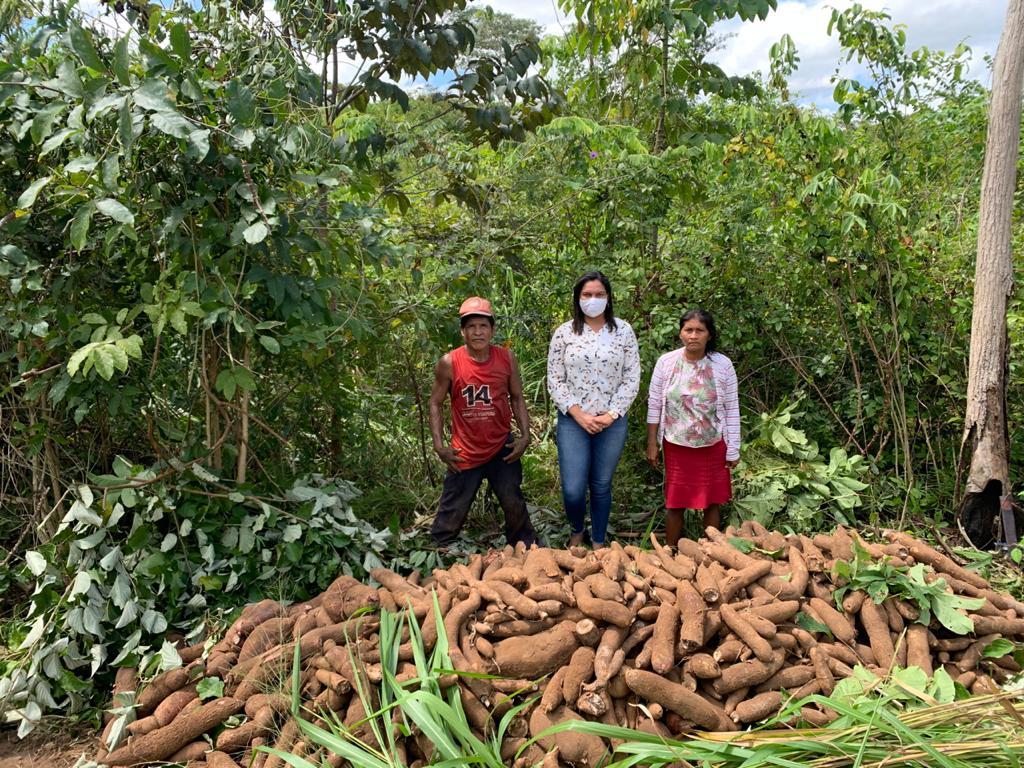 Gestão do prefeito Arnóbio investe na agricultura familiar em Jenipapo dos Vieiras