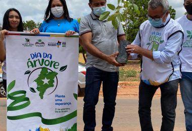 DIA DA ÁRVORE: Prefeito Arnóbio realiza plantio de mudas de árvores em Jenipapo dos Vieiras